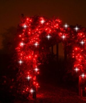 AGOTADO. Guirnalda led 3X4m rojo destellos cable rojo