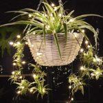guirnalda de luces
